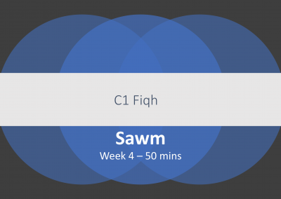Lesson Plan Sawm C1